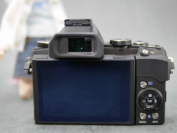 P1010226.JPG